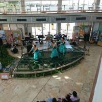 フラサークル交流会でバックバンドをするマカニオルオル