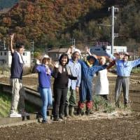 2019古代小麦の種蒔きご参加ありがとうございました!