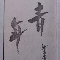 『青年』柿山紘輝川柳作品集 再発行(私家版)