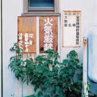 フィルムカメラと歩く秋 ~2019