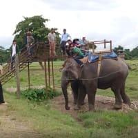 ネパール・ツアー記録: 取り分け、象に乗っての恐怖体験