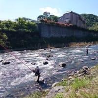 狩野川、待望の出水後