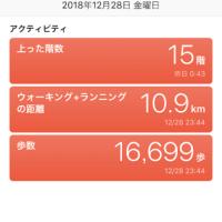 東京ディズニーシーに行ってきました。
