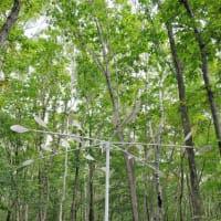 その1■イコロの森 ミーツ・アート2019 ー森の野外美術展ー(9月21~29日、苫小牧) 2019年秋の旅(3)