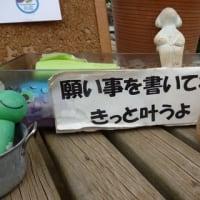 訪問カエル