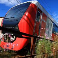 静岡鉄道はA3002とコスモス (2019年10月 音羽町-日吉町)