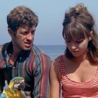 映画 気狂いピエロ(1965) ゴタール監督らしさが満載です