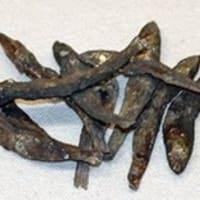 ブラタモリ 銚子