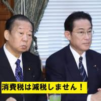 現金給付は生活保護者や在日(外国人)にする必要はない!安倍総理は「未来に夢を持てる日本に復活させていく」と言ったが、ならば消費税減税と真水の財政支出をもっと大幅に増やさなければいけない。
