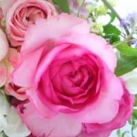 Fede des fleurs~花の祭り♪