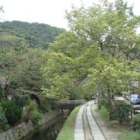 秋の京都・・・