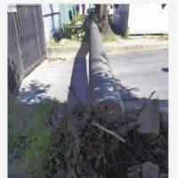 「ゆっくり傾いた」小学校庭の電柱が、体育授業中に、校庭の地面に、倒れた。壊 。市立鶉うずら小学校(岐阜市中鶉)の校庭で