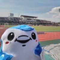 11/10 第40節 FC琉球戦 (沖縄・タピック県総ひやごんスタジアム)