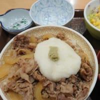 すき家「わさび山かけ牛丼」