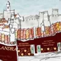 2238. アランドロアルの城