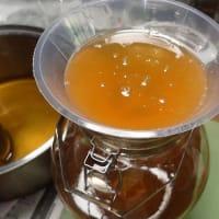 日本ミツバチの採蜜3:とれた蜂蜜を計ったら5.5キロもありました。