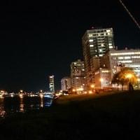 信濃川の岸辺にて