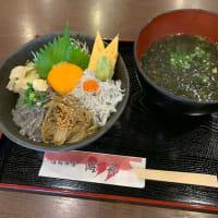 三種のしらすが一度に味わえる「しらすの三色丼」海鮮丼屋 小田原 海舟 本店