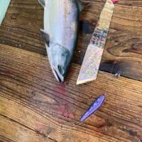 鱒を待ってマス🐟 トータルカーズワークスブログ
