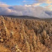 【大雪山国立公園・旭岳情報】冬景色