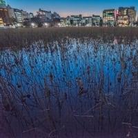 「12月の風」