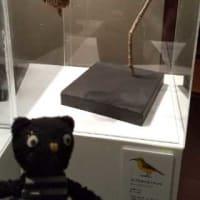 「鈴木まもる展 鳥の巣 WorId」中村屋サロン美術館@新宿駅