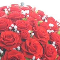 ♪真赤な薔薇とカスミソウ♪