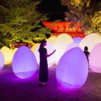 2019年「下鴨神社 糺の森の光の祭 Art by teamLab - TOKIO インカラミ」