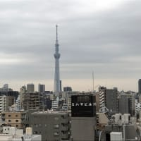雨が降る天気予報の東京ですが