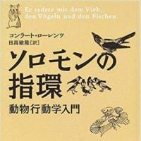 鳥類学とノーベル賞