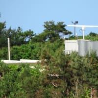 キャンプシュワブ沿岸の大浦湾側を観察