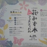 兵庫島公園ほかで「第37回二子玉川花みず木フェスティバル」