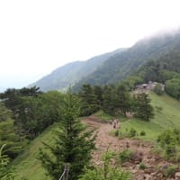 大菩薩峠移動運用 7月24日