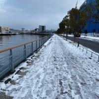 雪の降った次の日の朝、ジョギング。