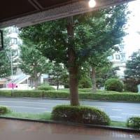 季節の身体の調整は東戸塚はくば整骨院へ
