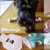 【BAUdogs】夏服リリース第二弾です!!