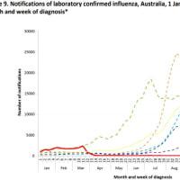 今シーズンはインフルエンザは流行しないです(オーストラリアのデータから)