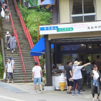 2019/08/17(土) 城ヶ平山