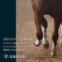 【HBAトレーニングセール2021(2歳)】の「上場馬名簿」が発行