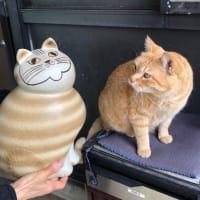 「リサ・ラーソン」展 ネコのミア
