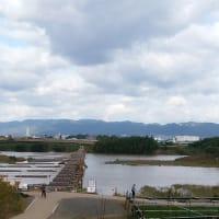 流れ橋 上津屋橋 2019年10月22日 曇り 京都