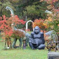 つれづれなるままに   4111   大自然の中の美術館  ディマシオ美術館