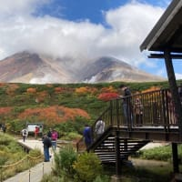 【大雪山国立公園・旭岳情報】大賑わいの紅葉