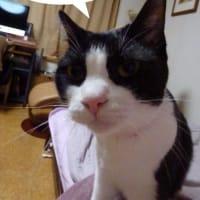 誰が・・・?