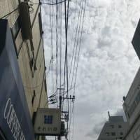 西荻窪ランチ 『それいゆ』 ・・・夏みたい!