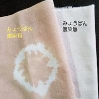 桜プロジェクトとハイビスカス開花