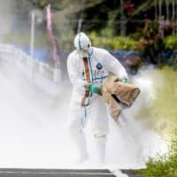 櫻井よしこが「自公政権の不策どころか無策」と言わないのが不思議でならない事態となっている「豚コレラ禍事件」