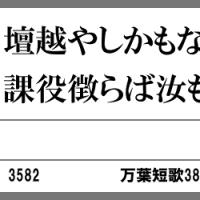 万葉短歌3847 壇越や3582