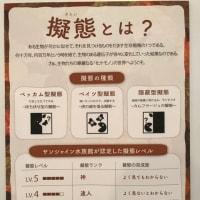 化ケモノ展 〜マリーナホップ〜