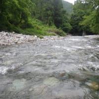 6月24日 那比川・亀尾島川で鮎釣り!
